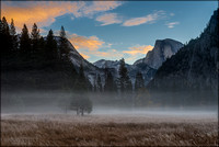 Magic Mist - Morning mist in Yosemite Ahwahnee Meadows