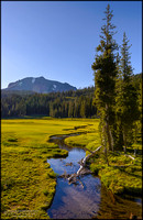 Paradise Meadows and Kings Creek